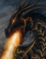 Dragon, Close-up by Ilnere