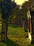 Cemetery 1 by Nobiax