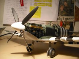 1 24 scale Spitfire Mk Vb by SindreAHN