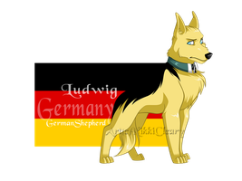 REVAMPEDHetalia Dogs: Germany by snickerdoots