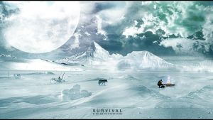 Survival by D-BH