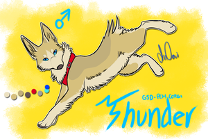 Thunder Reference 2012 by Jindovi
