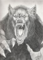 A P.O.W. Pissed Off Werewolf by PaulSpatola