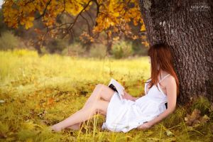 Autumn Falls 01 by george-mihes