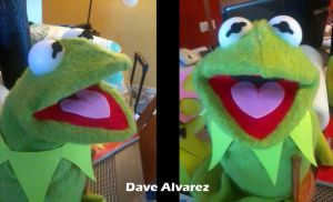 My custom Kermit puppet by DaveAlvarez
