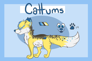 NOT MY ART: Cattums Ref by OldDallas
