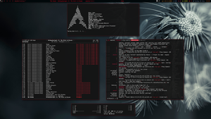Arch/AwesomeWM v3 July 2013 by transienceband