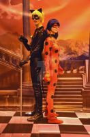 Chat Noir and Ladybug cosplays by Dantedart