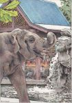 Water For Elephant by GloriaDei