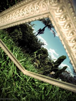 Mirror Image of the world... by AwakenendByDreams