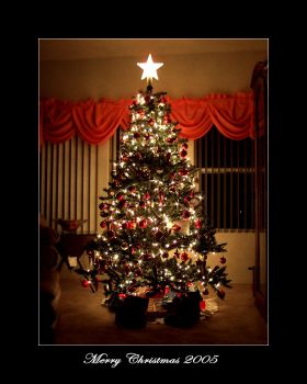 Merry Christmas 2005 by illmatic1