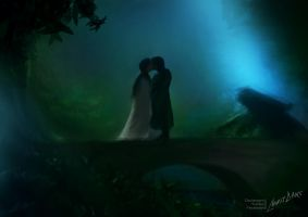 #7 Aragorn and Arwen by Ankredible