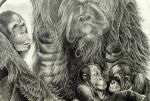 Orang Family by Germanicus-Fink
