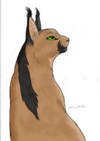 Veluer The Caracal by Sky-Lily