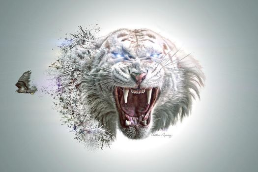 Abstract Tiger by Aymen-Ouertani