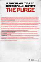 The Purge Survival Poster (Promo) by MrAngryDog