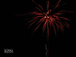 fireworks at 12 by ann-4