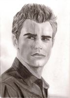 Stefan Salvatore V. Diaries by neongranola