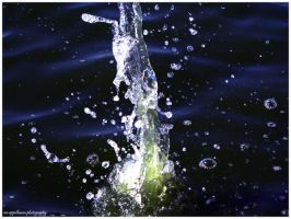 water pole by Nivster