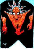 Spiderman for Thibaud by guillomcool