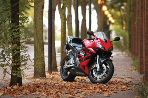 CBR600RR by monosolo