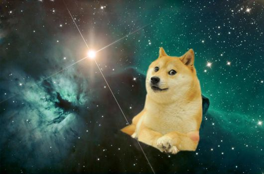 14011 doge in space - photo #16
