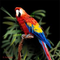 Parrot - Digital Painting by eyeqandy