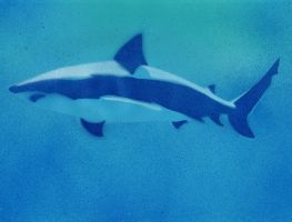 Blue Shark by Ali-Radicali