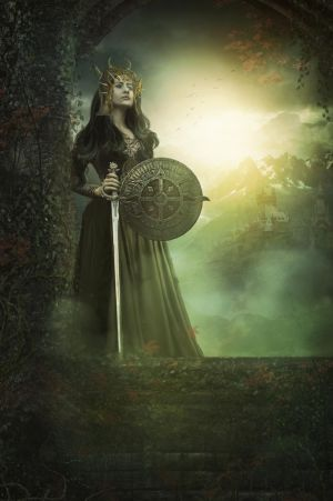 Nordic Warrior by charmedy
