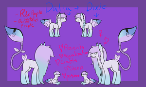 Dalia and Dixie Reference by Bringmetohell