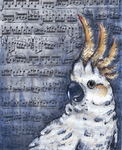 Violin Music and a Cockatoo by mevagh