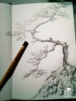 Tree Sketch by Vequin