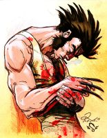 Wolverine Quick Colour by richyunspoken