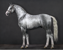 RWS Misirlou by feverpaint
