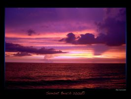 The Purple pink Beach 2006 by andys184