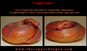 'Copper Rose' Baby Ball Python by TheCopperDragon2004