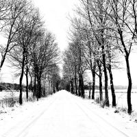 lost road by augenweide
