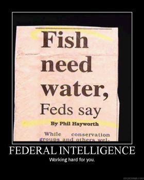 Fed Int Demotivator by Freyad-Dryden