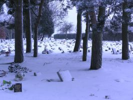snowy graveyard -trees- 8 by dark-dragon-stock