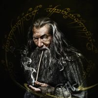 Gandalf the Grey by YoungPhoenix3191
