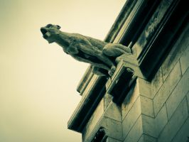 Gargoyle of Sacre Coeur by speedofmyshutter