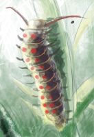 Caterpillar by James-in-the-Shell