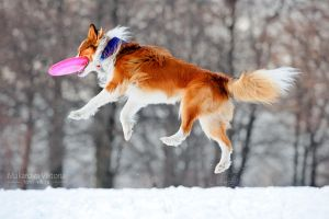 Walking in the air by Vikarus