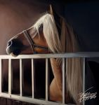 Cavalo - Horse by WilleWellDesigner