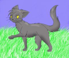 Warrior cat by Dragonknight575