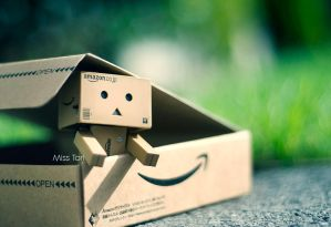 Danbo Is Home by Lady-Tori