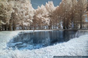 auschwitz in infrared - lake by greyfin