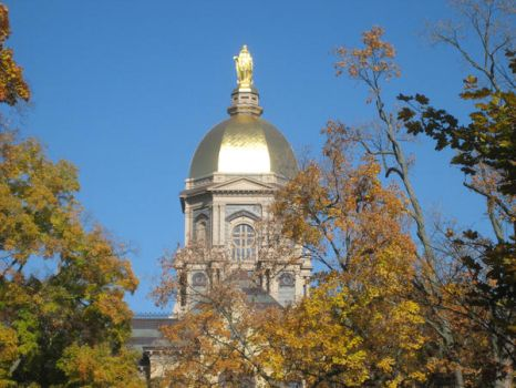 Notre Dame by caitly