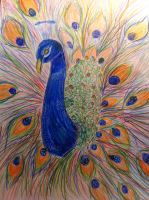 peacock(finished) by annebe1244