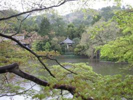 The Hidden Teahouse by theamazingkitcat